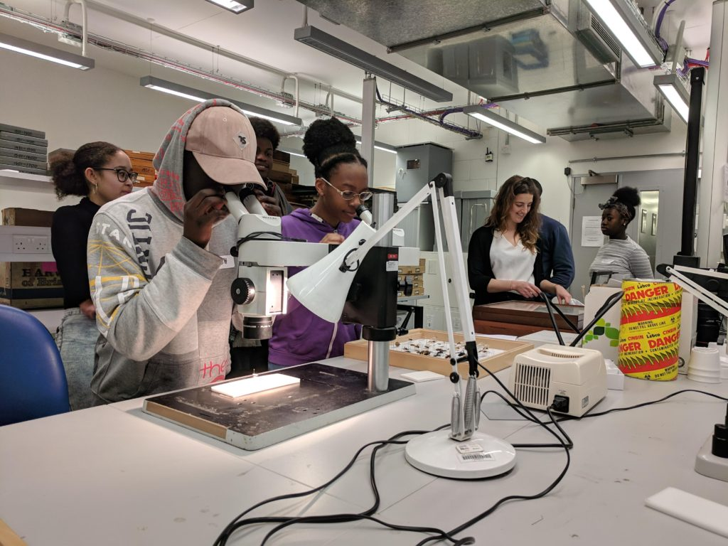 BAME teenagers looking through microscopes